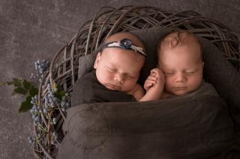 Babyfotos von Zwillingen beim Shooting in dunklen Tönen