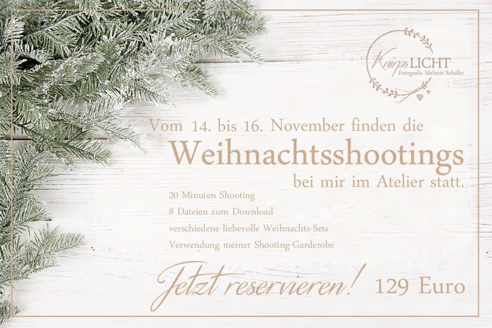 Sonderaktion Weihnachtsminis